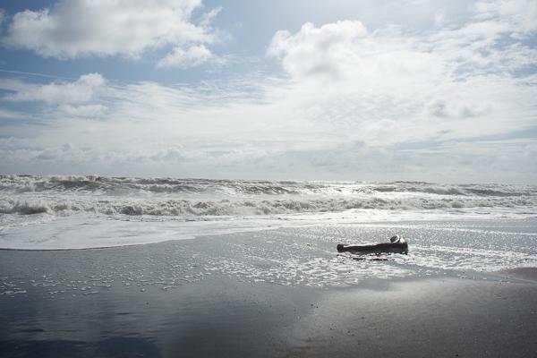 Low Tide @El Transito